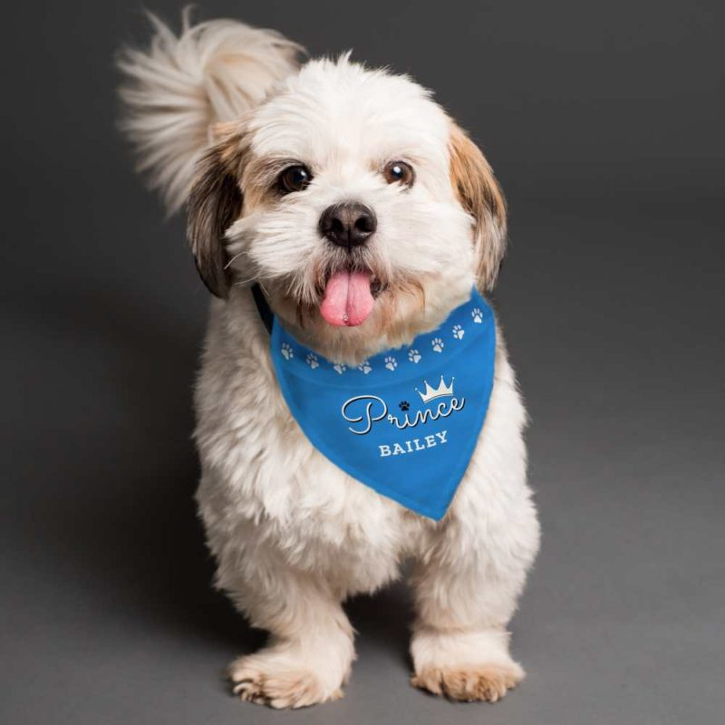 Personalised Blue 'Prince' Dog Bandana