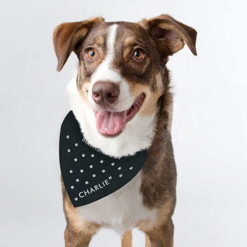 Personalised 'Paw Print' Dog Bandana