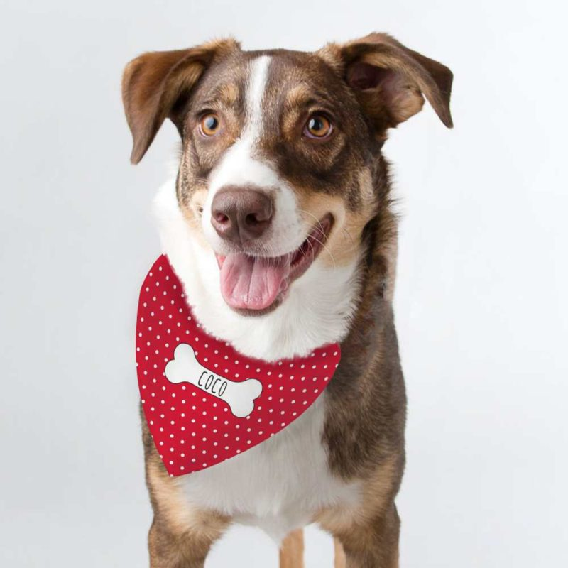 Personalised 'Red Polka Dot' Dog Bandana