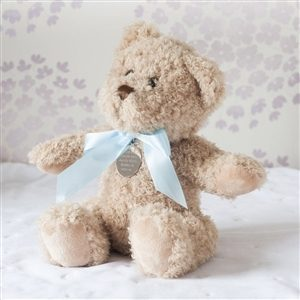 Personalised Baby Boy Small Bramble Bear