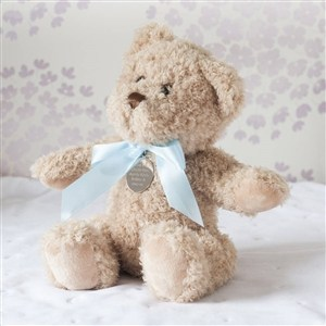 Personalised Baby Boy Small Bramble Bear