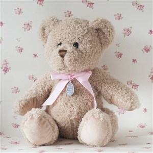 Personalised Baby Girl Small Bramble Bear
