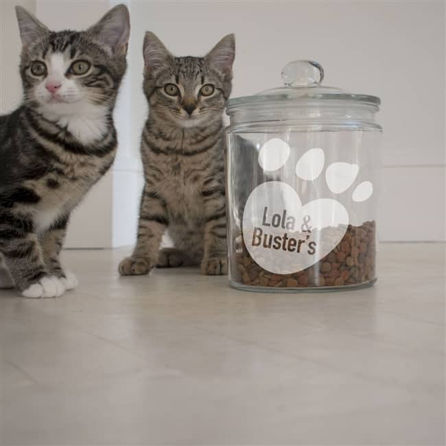 Personalised 'Paws' Cat Treat Jar