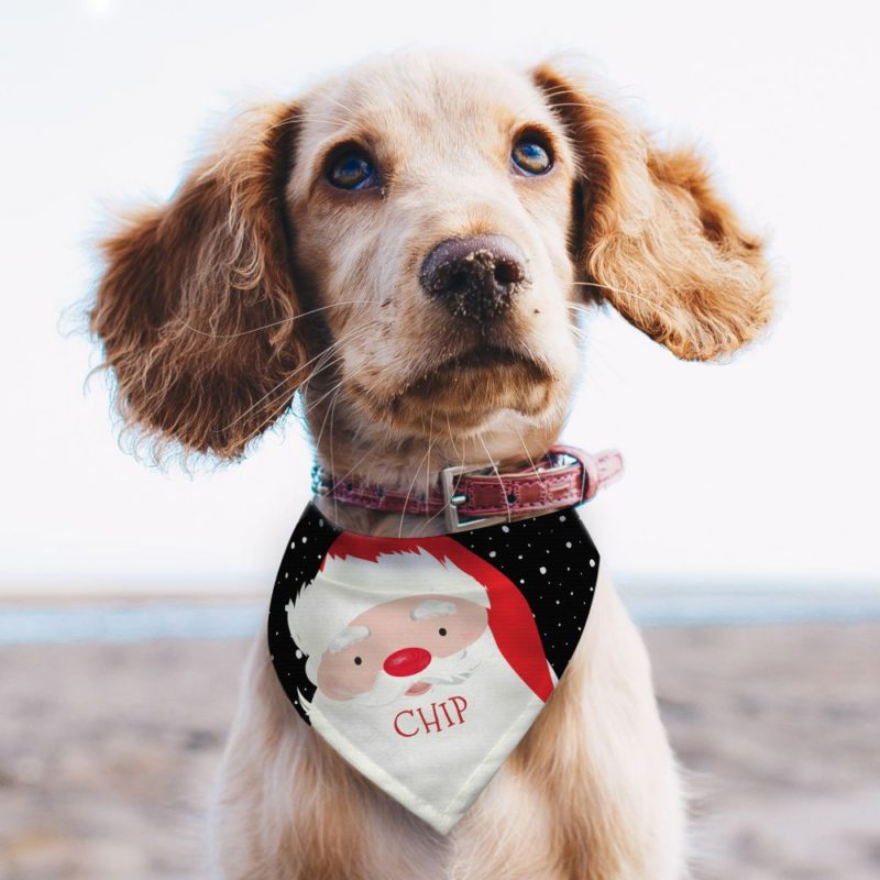 Personalised 'Santa' Dog Bandana