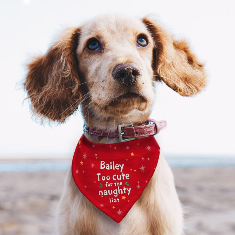 Personalised Christmas 'Too Cute' Dog Bandana
