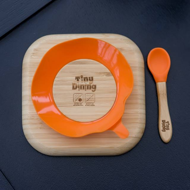 Personalised Dinosaur Bamboo Suction Plate & Spoon