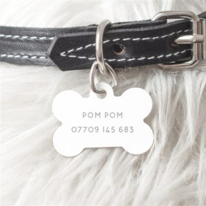 Personalised Steel Dog Bone ID Tag